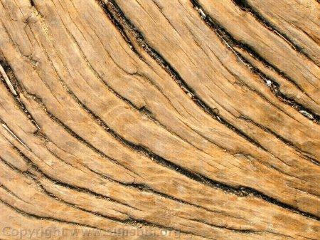 Химические свойства древесины